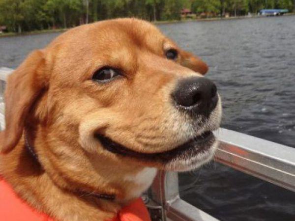Adoro passeios de barco