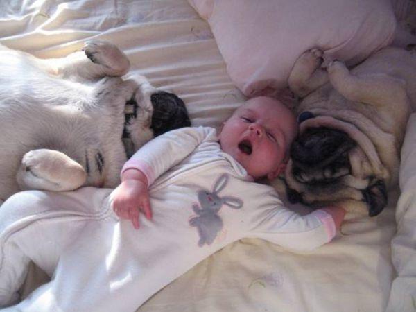 warhrrhrrr... está-se tão bem na cama