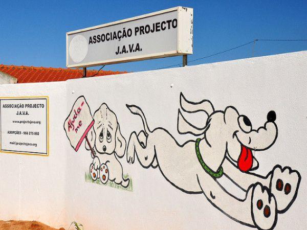 Foto Associação Projecto Java