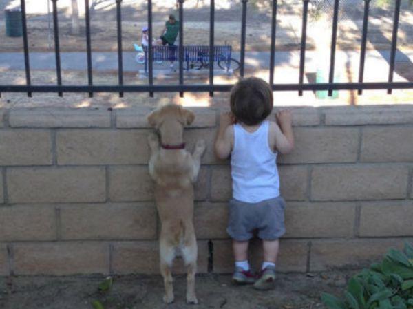 Dois espiões, amigos inseparáveis!