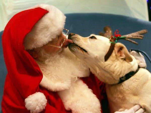 Só te peço um beijo Pai Natal