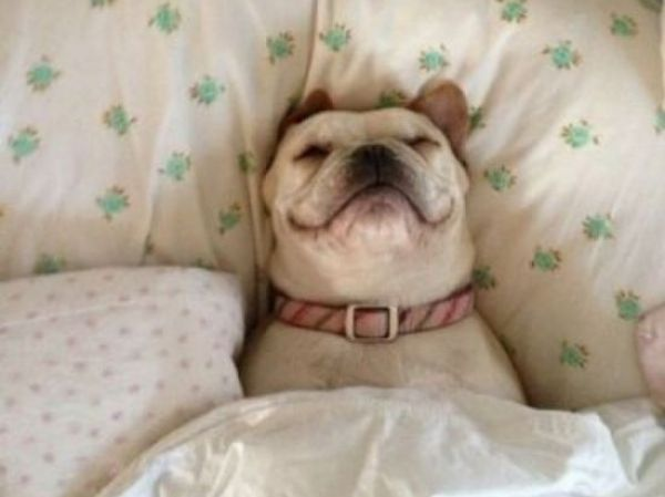 Hoje ninguém me tira na cama!