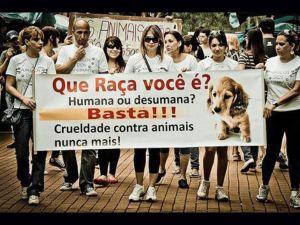 Foto filho Associação São Francisco de Assis