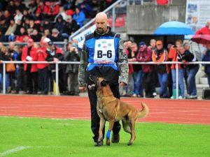 Mundial FCI IPO 2011 Alemanha - Copyright: Anke Müller
