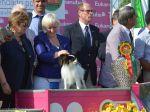 Resultados da 122ª Exposição Canina Internacional de Lisboa
