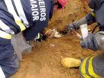 Bombeiros de Rio Maior salvam cão de forma extraordinária