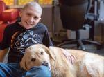 Examinar o efeito dos cães de terapia em crianças com câncro