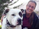 Família prefere viver num carro a abandonar pit bull