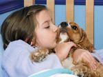 Novo estudo explica porque é que ter cães reduz alergias