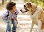 Cães e crianças: a importância do primeiro contacto