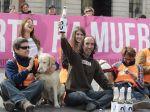 Madrid proibirá o abate de animais abandonados