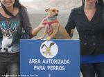 Las Palmas inaugura a primeira praia canina nas Canárias