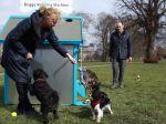 Máquina de venda automática para cães