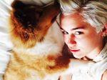 Miley Cyrus toma medidas para encontrar criador responsável
