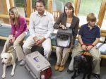 Cortisol e frequência cardíaca dos cães aumentam na sala de espera