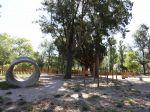 Criação de 20 parques caninos em Lisboa