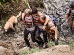 Cão vadio cumpre prova mundial de aventura e ganha nova vida