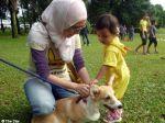 Tocar em cães: um pequeno grande gesto na Malásia