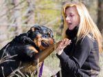 Será que existem cães realmente perigosos?