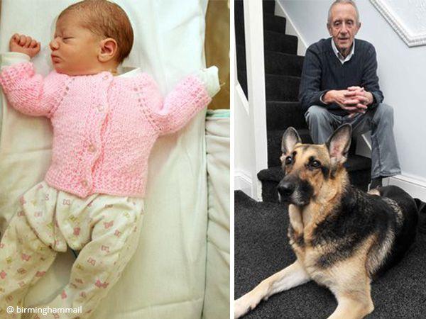 Foto Cão salva recém-nascida abandonada