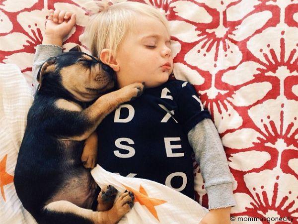 Foto Sestas entre cachorro e bebé deliciam internautas