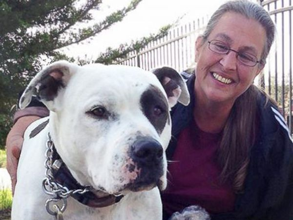 Foto Família prefere viver num carro a abandonar pit bull