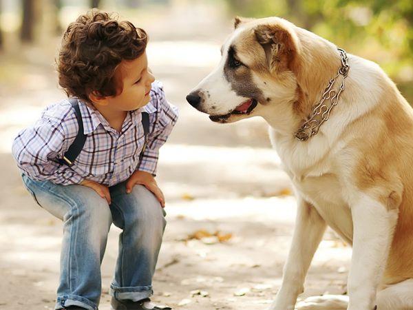 Foto Cães e crianças: a importância do primeiro contacto