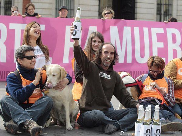 Foto Madrid proibirá o abate de animais abandonados