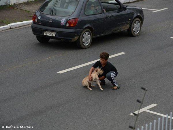 Foto Criança arrisca vida para salvar cão atropelado