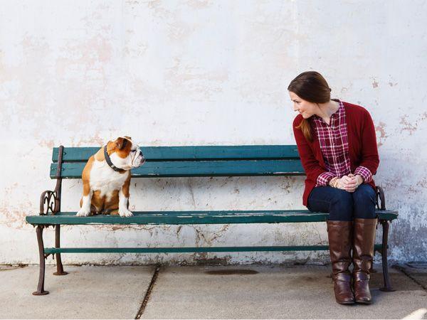Foto Homem e cão: Quem é que se aproximou de quem?