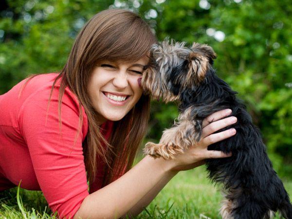 Foto Gosta mais do seu cão ou do seu companheiro?