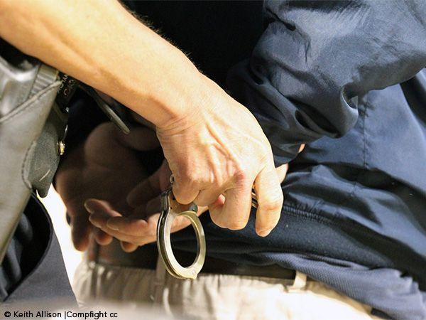 Foto Projeto-lei prevê penas de três anos por maus tratos a animais